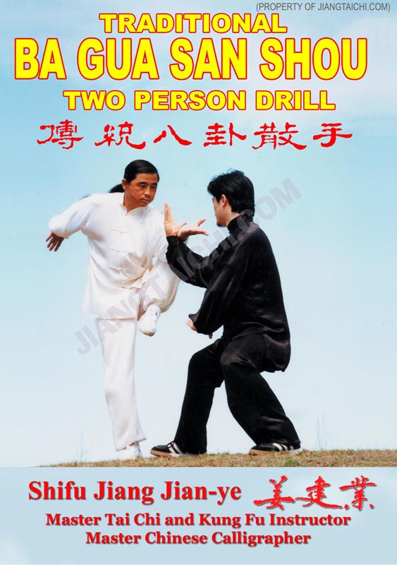 Ba Gua San Shou - 2 Person Drill