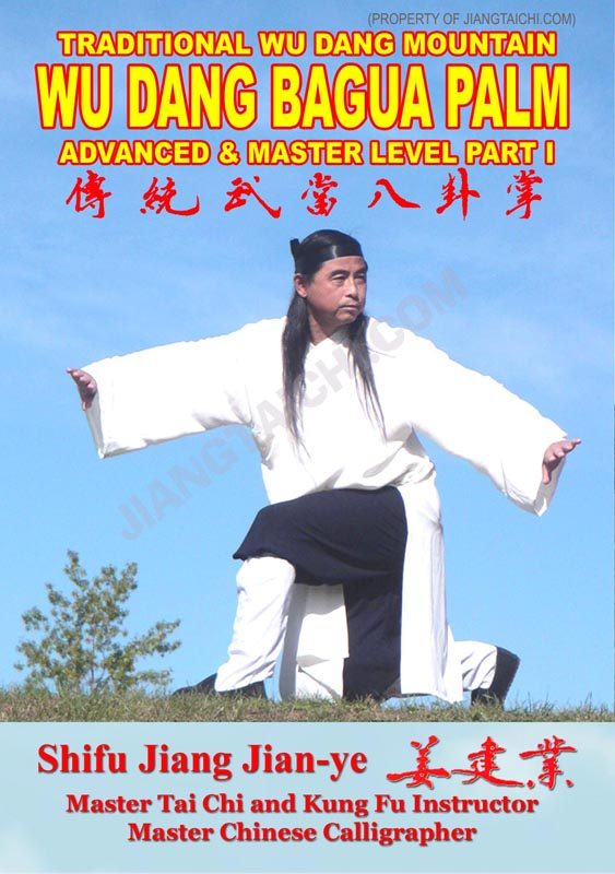 Wu Dang Bagua Palm - Advanced & Master - Part 1
