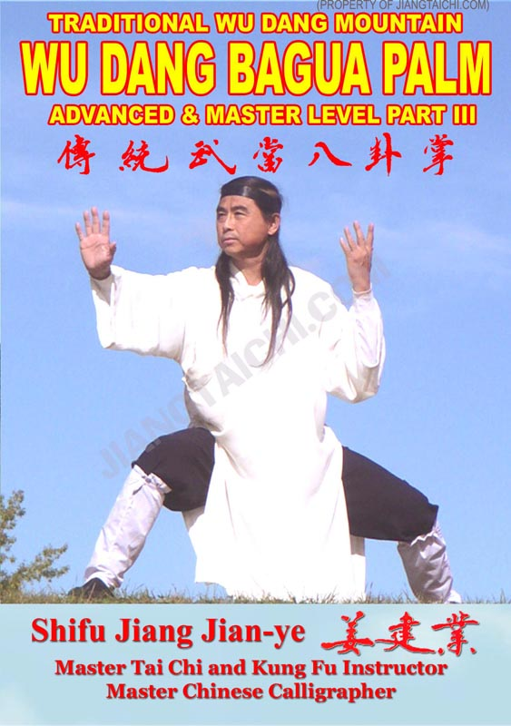 Wu Dang Bagua Palm - Advanced & Master - Part 3