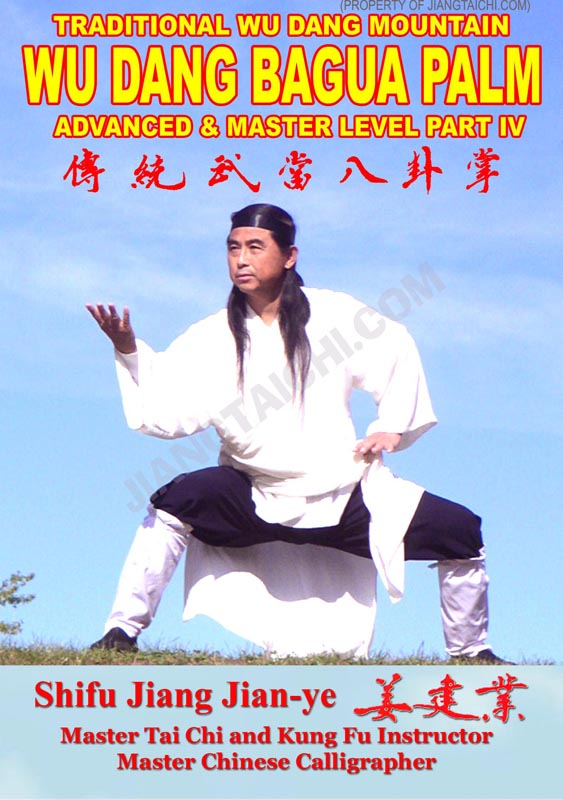 Wu Dang Bagua Palm - Advanced & Master - Part 4