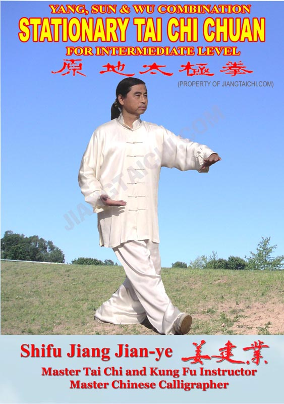 Stationary Tai Chi Chuan - Intermediate Level